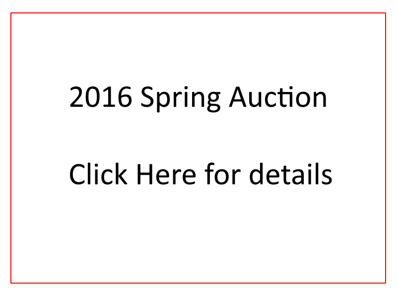 spring-auction